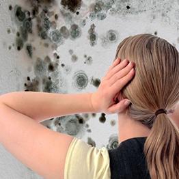 Грибок на стенах. Что это такое и как с ним бороться?